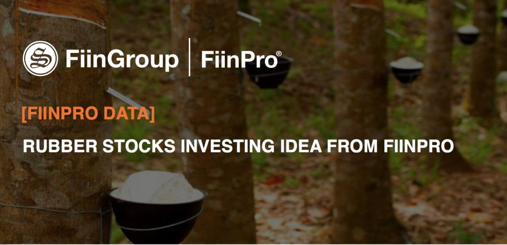 [FiinPro Data] Rubber stocks investing idea from FiinPro